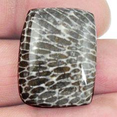 Natural 28.15cts stingray coral from alaska 25x19 mm loose gemstone s4600