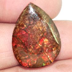 Natural 14.35cts ammolite (canadian) multi color 23x17mm loose gemstone s6383