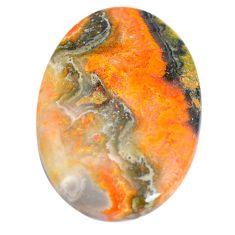Natural 55.10cts bumble bee australian jasper 40x28 mm oval loose gemstone s7162