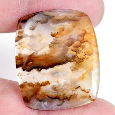 Natural 25.05cts plum agate yellow cabochon 30x25mm octagan loose gemstone s7305