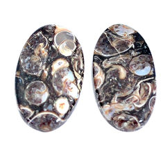 Natural 17.40cts turritella fossil agate 22x13mm oval pair loose gemstone s7662