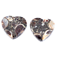 Natural 16.30cts turritella fossil snail agate 15x15mm pair loose gemstone s7664