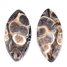 Natural 13.45cts turritella fossil snail agate 21x10mm pair loose gemstone s7665