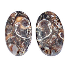 19.45cts turritella fossil snail agate 21x12mm oval pair loose gemstone s7671