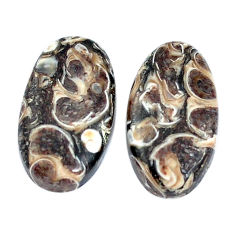 Natural 19.35cts turritella fossil snail agate 20x11mm pair loose gemstone s7680