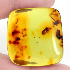 Natural 25.15cts amber from colombia green 32x31 mm octagan loose gemstone s9543