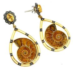 50.31cts victorian diamond brown ammonite fossil 925 silver gold earrings v1572