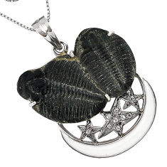 16.73cts vintage natural diamond black trilobite 925 silver necklace v1959