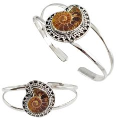 Natural brown ammonite fossil 925 silver nautilus shell adjustable bangle h89237