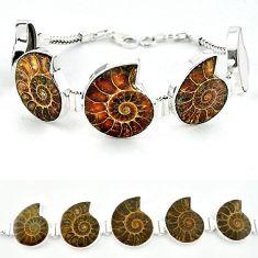Natural brown ammonite fossil fancy 925 sterling silver bracelet j46416
