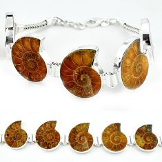 925 sterling silver natural brown ammonite fossil bracelet jewelry j46417