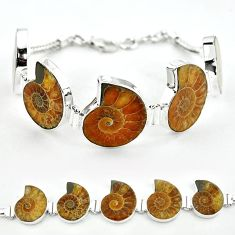Natural brown ammonite fossil 925 sterling silver bracelet jewelry j46418