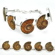 925 sterling silver natural brown ammonite fossil bracelet jewelry j46419