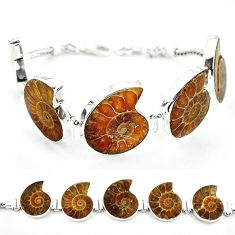 Natural brown ammonite fossil 925 sterling silver bracelet jewelry j46420