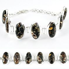 925 silver natural brown turritella fossil snail agate oval bracelet k41348