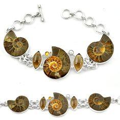 Natural brown ammonite fossil smoky topaz 925 silver bracelet jewelry k78122