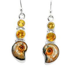 925 silver 12.83cts natural russian jurassic opal ammonite earrings p64688