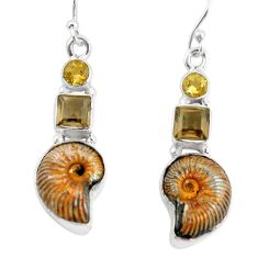 925 silver 15.31cts natural russian jurassic opal ammonite earrings p64692