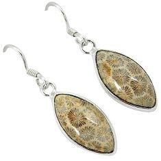Black fossil coral (agatized) petoskey stone 925 silver dangle earrings k14305