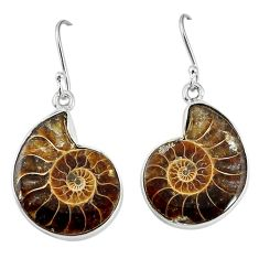 925 silver natural brown ammonite fossil dangle earrings jewelry k84030
