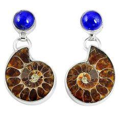 Natural brown ammonite fossil lapis 925 silver dangle earrings k84836