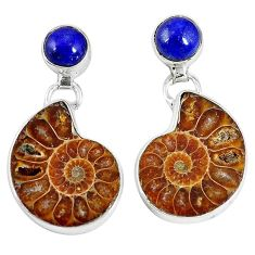 Natural brown ammonite fossil lapis 925 silver dangle earrings jewelry k84839
