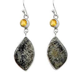 Natural black stingray coral from alaska 925 silver dangle earrings k96401
