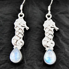 Clearance Sale- 925 silver 5.84cts natural rainbow moonstone dangle seahorse earrings d40553