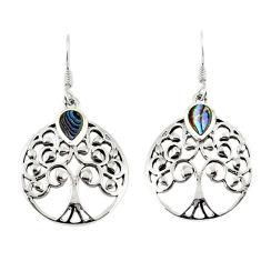Green abalone paua seashell enamel 925 silver tree of life earrings c11574