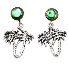 Natural green abalone paua seashell 925 silver dangle palm tree earrings c12597