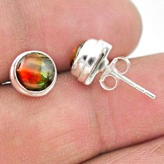 4.39cts natural multi color ammolite (canadian) 925 silver stud earrings t19410