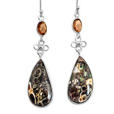 16.44cts natural turritella fossil snail agate 925 silver dangle earrings r73029