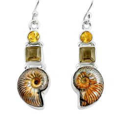 16.92cts natural brown russian jurassic opal ammonite 925 silver earrings p64703