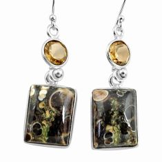 19.76cts natural brown turritella fossil snail agate 925 silver earrings p78649