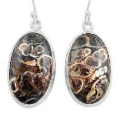 22.59cts natural brown turritella fossil snail agate 925 silver earrings p88757