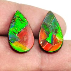 Natural 14.45cts ammolite triplets 21x12 mm pear pair loose gemstone s13487