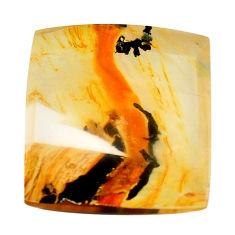 Natural 26.30cts dendritic quartz orange 20x20 mm octagan loose gemstone s13151