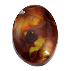 Natural 8.45cts mexican fire agate multicolor 17x12 mm loose gemstone s15074