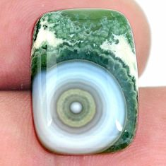 Natural 11.30cts ocean sea jasper (madagascar) 18x13 mm loose gemstone s11500