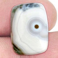 Natural 12.40cts ocean sea jasper multi color 18x13 mm loose gemstone s10285