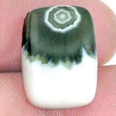 Natural 12.40cts ocean sea jasper multi color 18x13 mm loose gemstone s10293