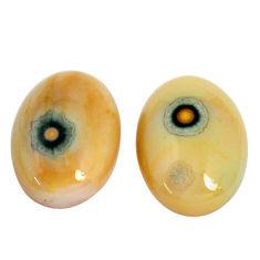 Natural 17.35cts ocean sea jasper pair 18x13mm oval loose gemstone s10280