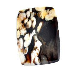 Natural 14.45cts peanut petrified wood fossil 23.5x16 mm loose gemstone s11048