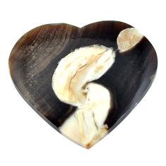 Natural 14.45cts peanut petrified wood fossil 23.5x26 mm loose gemstone s11051