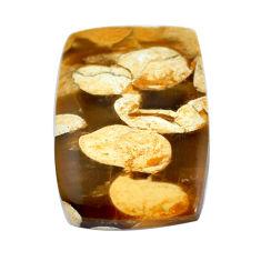 Natural 16.30cts peanut petrified wood fossil 24x17 mm loose gemstone s11069