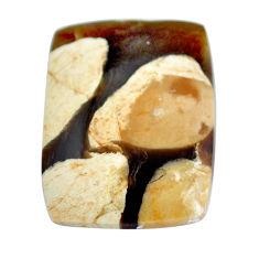 Natural 16.25cts peanut petrified wood fossil 24x18 mm loose gemstone s11070