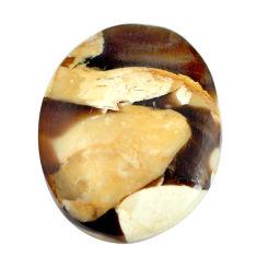 Natural 13.45cts peanut petrified wood fossil 24x18.5 mm loose gemstone s11079