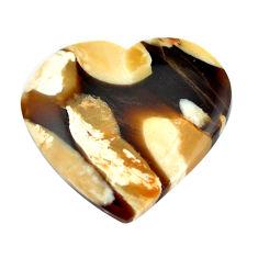 Natural 16.30cts peanut petrified wood fossil 24x25 mm loose gemstone s11076