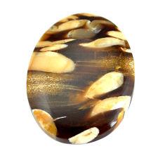 Natural 16.30cts peanut petrified wood fossil 25.5x19 mm loose gemstone s11077