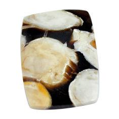Natural 16.30cts peanut petrified wood fossil 25x17 mm loose gemstone s11047